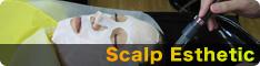 Scalp Esthetic(スキャルプエステ)